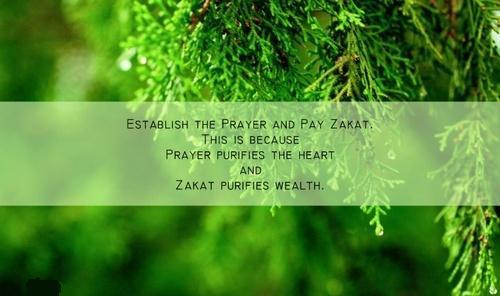 Benefits of zakat