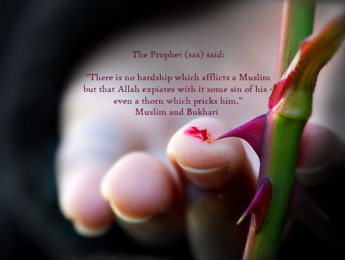 Beautiful Hadith About Life