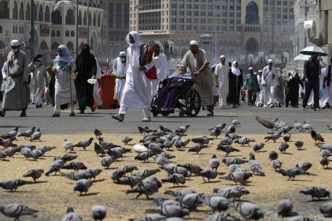 pigeon islam